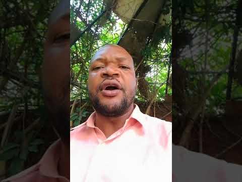 FANDA NA YO reaction by alka mbumba