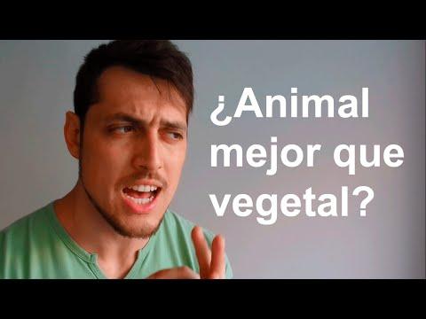 Calidad de las Proteínas: Vegetal vs Animal