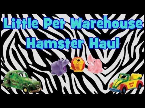 pet warehouse