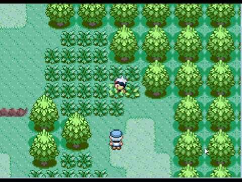 Image result for pokemon sapphire gameplay