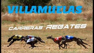 Carreras de Regates en Villamuelas, sábado 17 de julio 2021