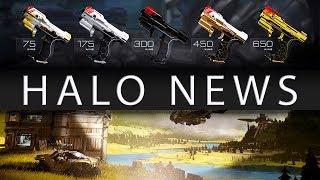 HALO NEWS - Halo Infinite Microtransactions, New Halo 5 Skins, MCC Updates