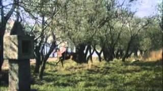 Рыцарский замок trailer.avi