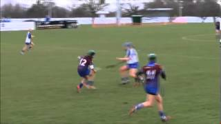 Ashbourne Camogie Hit (Originally recorded by Jerome Quinn)