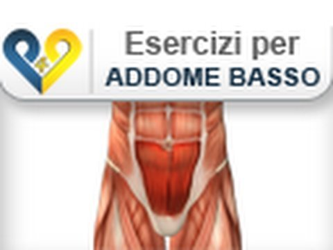 Top Esercizi Addominali Bassi ( Area bassa dell'addome retto ) - YouTube LB07