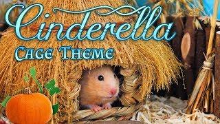CINDERELLA Hamster Cage Theme Kashis Playcage