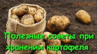 видео Как правильно хранить картофель в доме или квартире
