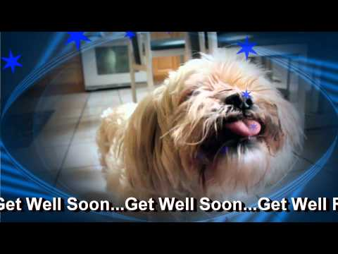 Get Well Soon Doggy E Greeting Card