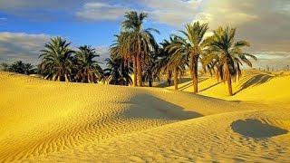 Тунис. Атмосфера Востока.