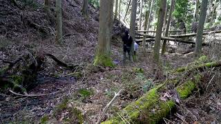 Site Study of Hieizan #06