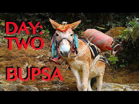 SOLO TREKKING EVEREST B.C. | Nunthala To Bupsa | 10 Hour Hike | DAY TWO
