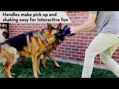 kong-flexball---dog-toy