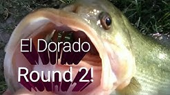 Bass Fishing At El Dorado Park Scottsdale, AZ November 2, 2018