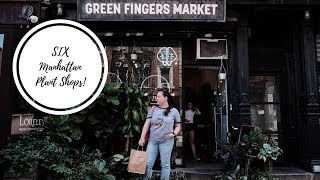 I visit SIX Plant Shops in Manhattan, NYC!