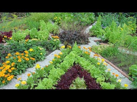Дизайн огорода: 100 полезных идей