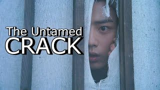 The Untamed CRACK