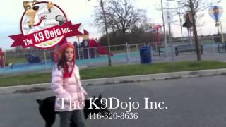 K9dojo Teenage Girls Display Their Skills Training Their Doberman Puppy Off Leash