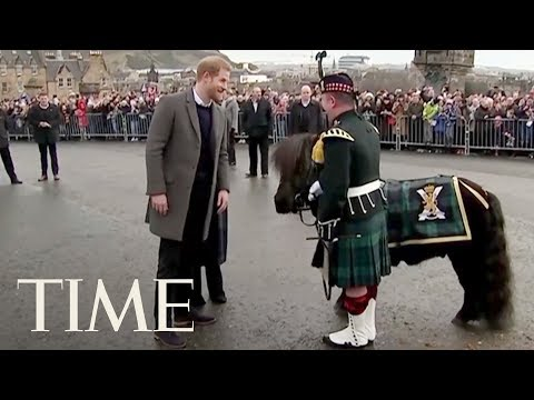 Prince Harry And Meghan Markle Were Greeted By A Tiny Pony During A Visit To Scotland | TIME