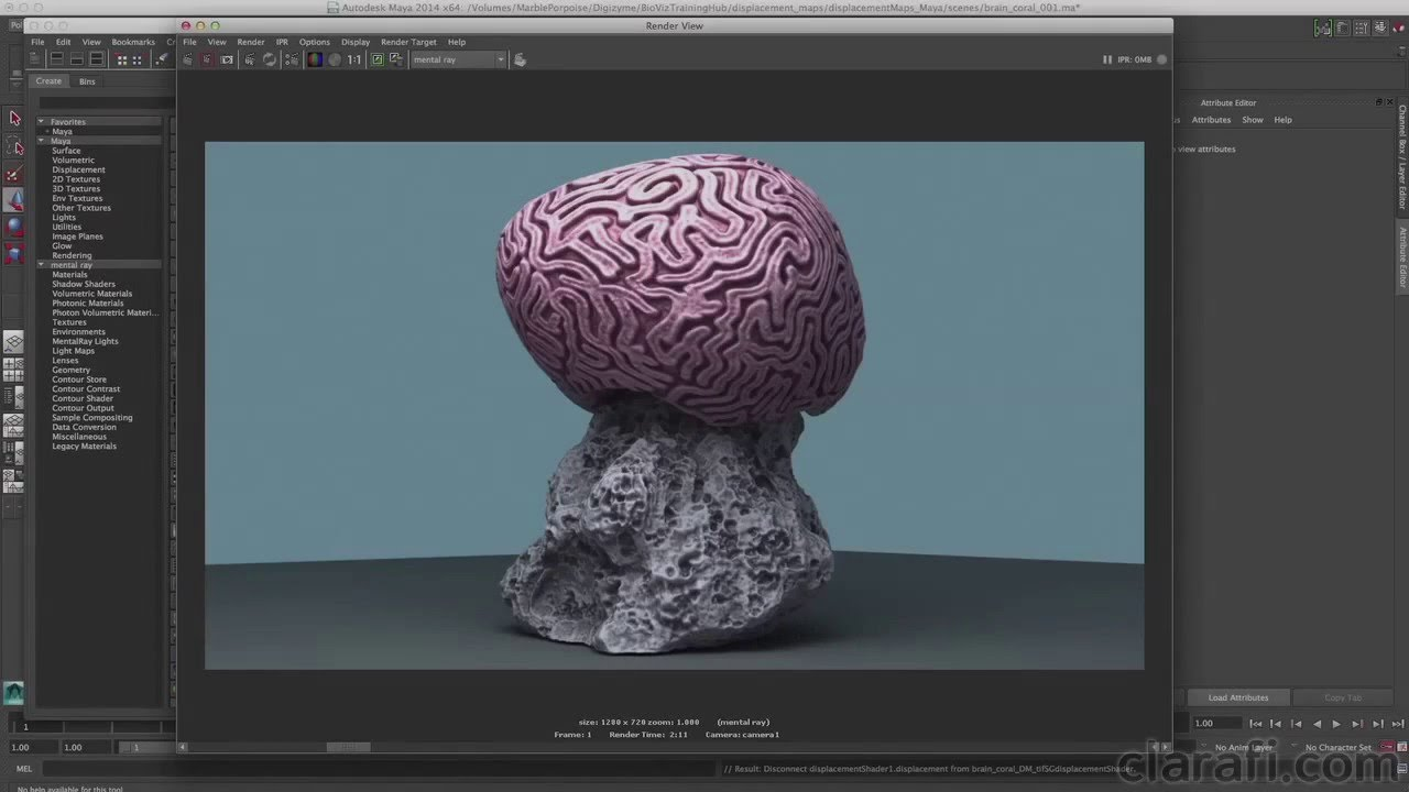 Generating ZBrush Texture & Displacement Maps for Rendering in Maya: Brain  Coral - Chap1 Intro