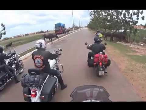 Bodes do Asfalto - Belém x São Luis