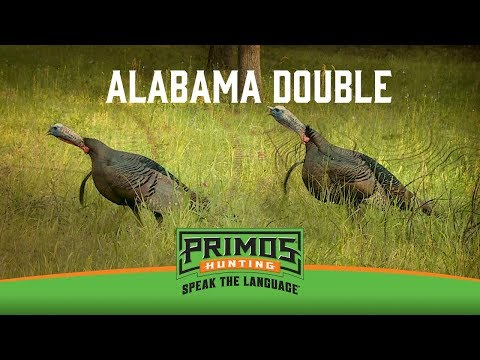 Doubled Up On Alabama Gobblers