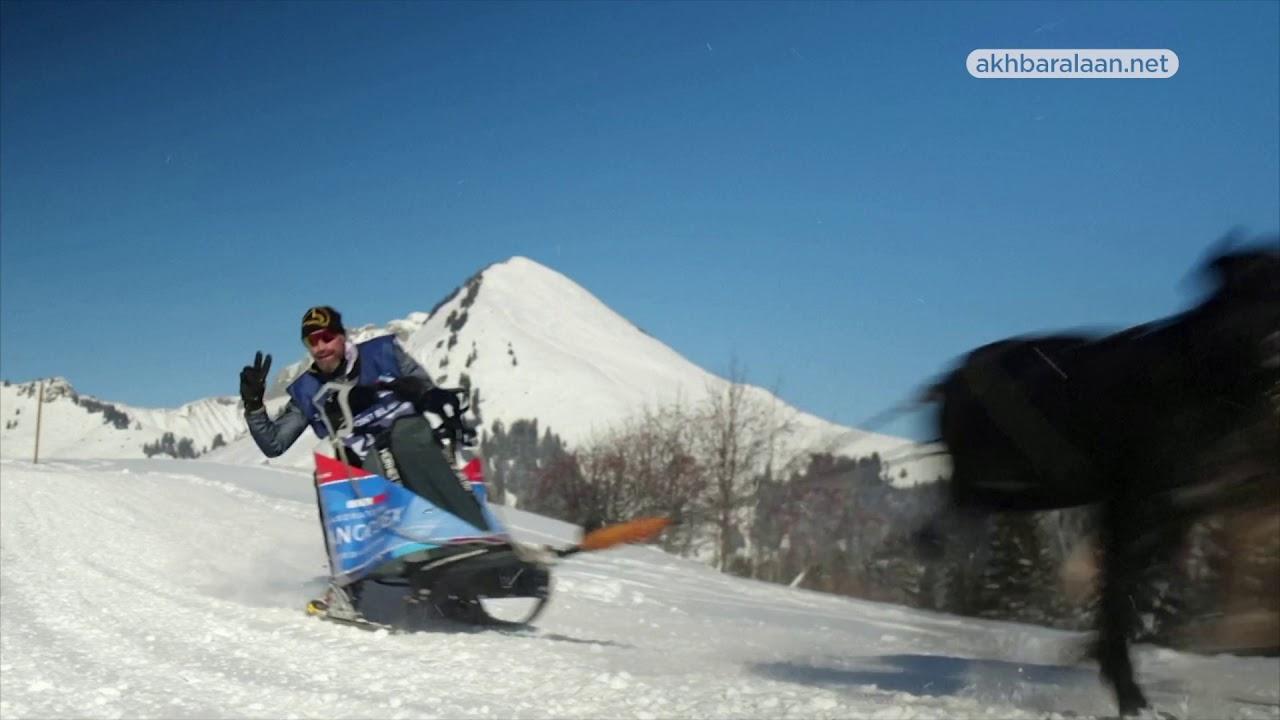 سباقLa Grande Odyssee.. ماراثون للكلاب في جبال الألب الفرنسية  - 20:00-2021 / 1 / 15