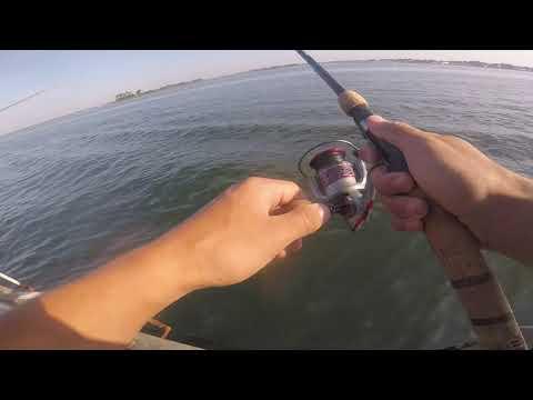 Amazing Pier Fluke Fishing. Long Island, NY 7/14/19