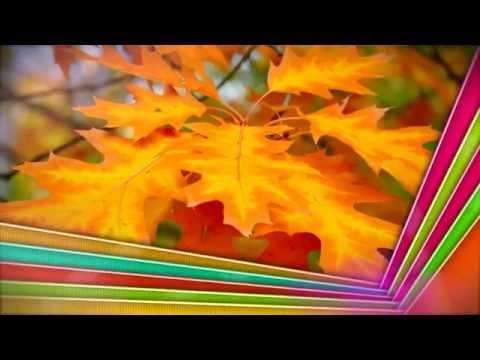 Слайд-шоу - видео из фотографий и музыки!