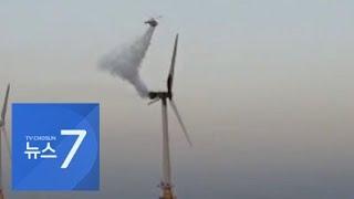 대전 아파트 단지에 멧돼지 떼 소동…높이 78m 해상풍…