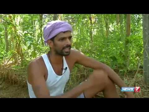 Organic Farming training at ' Vanagam ' : Special story | Tamil Nadu | News7 Tamil
