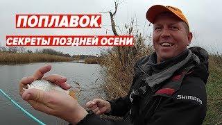 Поплавок секреты рыбалки поздней осенью.