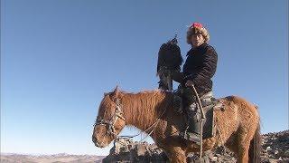 '검독수리'를 이용해 사냥하는 몽골의 카자흐족 (Mongolian Kazakh Huntings with the 'Golden eagle')