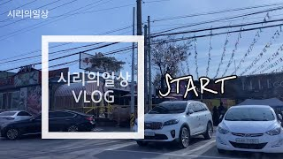 [Vlog] 시리의일상 / 취업 성공했어요~~~!! /…