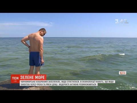 Вода вздовж чорноморського