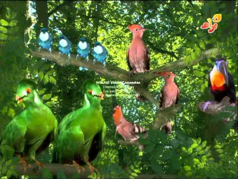 Birds singing / The Titiffers