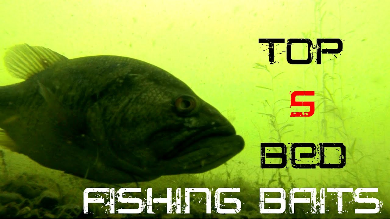 top 5 baits for bed fishing - youtube, Hard Baits
