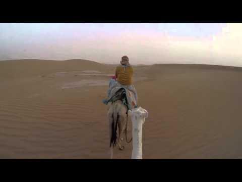 Short Camel Trek in a Sandstorm at Erg Chigaga, Morocco