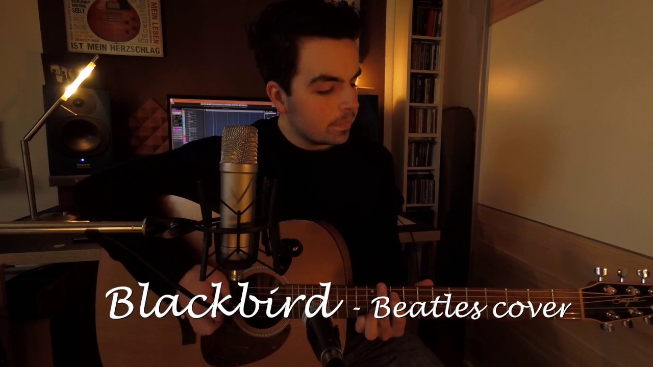 BLACKBIRD (Beatles Cover) - Mike Furtwängler