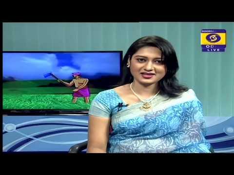 Amba O' Kaju Fasala ra Jatna ( Care Of Mango & Cashew nut Farming ) || Krushi Darsha