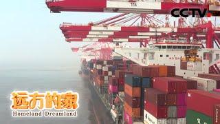 《远方的家》 20200602 长江行(101) 向东是大海| CCTV中文国际