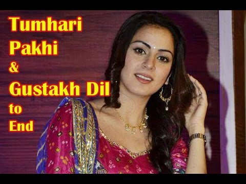 Tumhari Pakhi And Gustakh Dil To End In Two Weeks BT