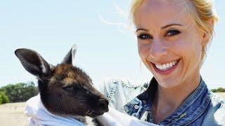 [Doku] unterwegs: Australien - Weite, Bumerangs und Kängurus (HD)