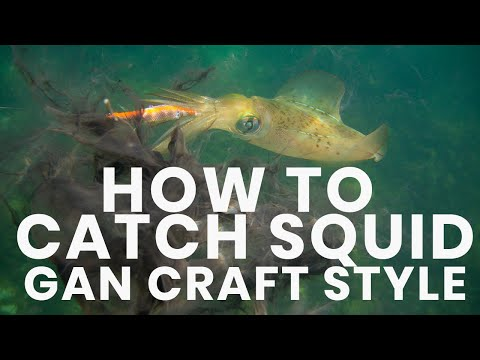 How To Catch Squid - Hooked Up Video