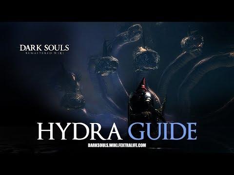 Hydra Mini Boss Guide - Dark Souls Remastered