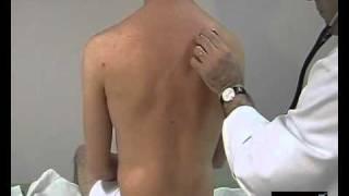 Pneumologie - Auscultation Pulmonaire