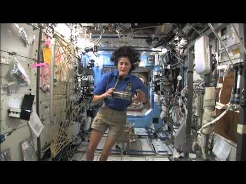 Astronaut Greets YouTube Space Lab Participants
