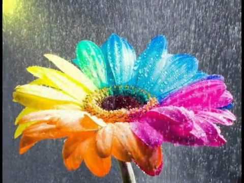Sudirman ~ Antara Hujan Dan Airmata