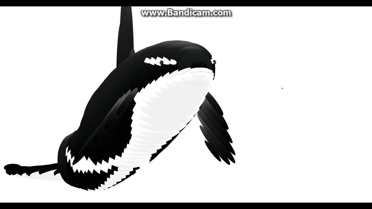 orca mouse follower wiggle youtube