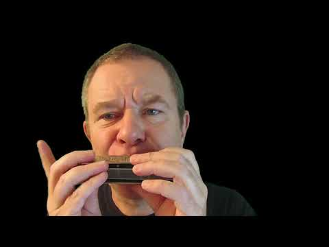 Which harmonica should I use for online courses?