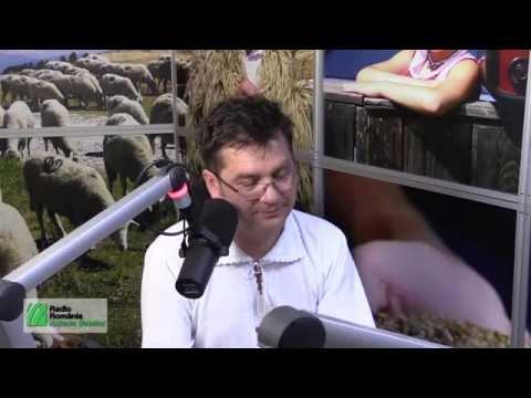 Interviu cu Călin Brăteanu